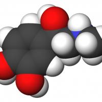 Epinephrine-3d-CPK