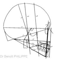 1. Analyse architecturale crânio-faciale de Jean Delaire. L'analyse du crâne et du rachis permet de déterminer la ligne d'équilibre crânio-faciale F1 (ici en noir gras) sur laquelle doivent normalement se positionner le maxillaire et la mandibule.