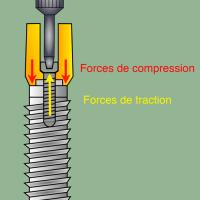 Fig-1vis