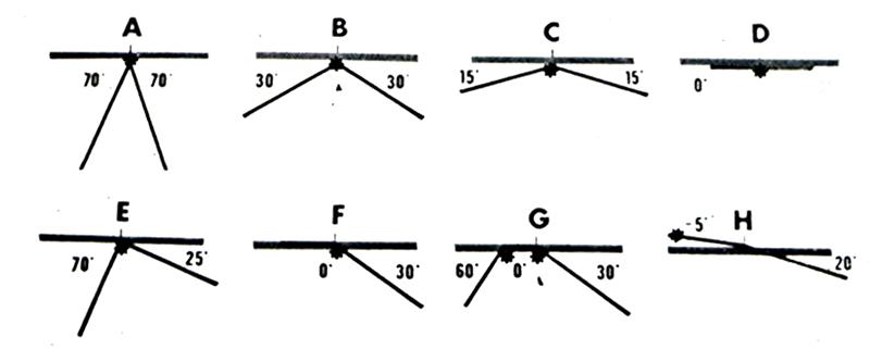 Fig 6- Différentes situations cliniques identifiées par les AFMP