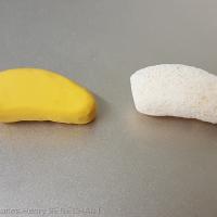 Fig. 14 : Greffon osseux et greffon en silicone