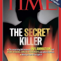 1a. Couverture de Time Magazine du 23/02/2004.