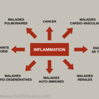 1b. L'inflammation tissulaire chronique est le dénominateur commun de nombreuses maladies systémiques.
